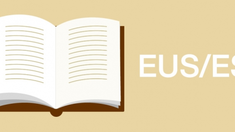 Basque – Spanish dictionary for mobiles